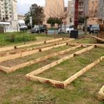 Le jardin potager… Il a bien changé !